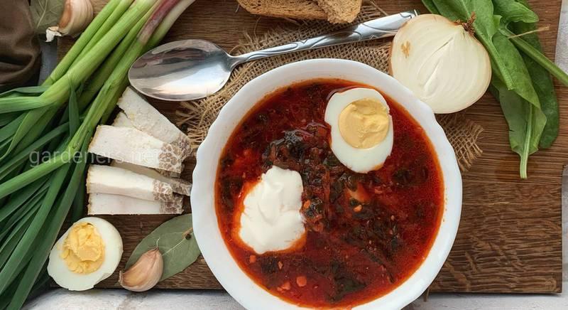 Как и из чего готовят украинский борщ: рецепты, очередность, дополнительные ингредиенты