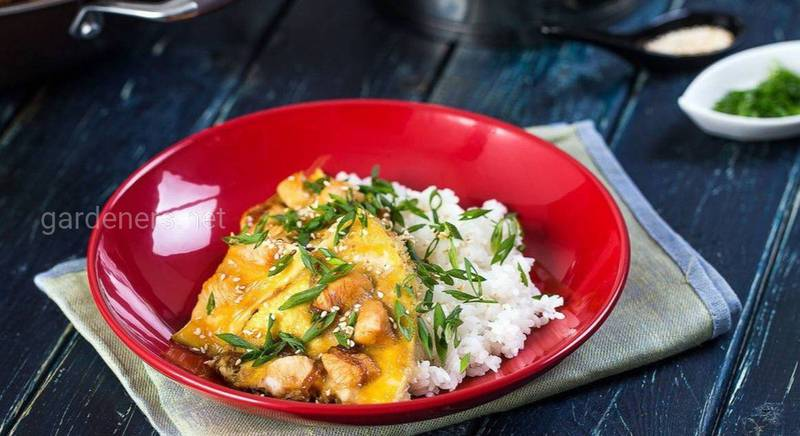 Оякодон — японский омлет с рисом и курицей. Рецепт