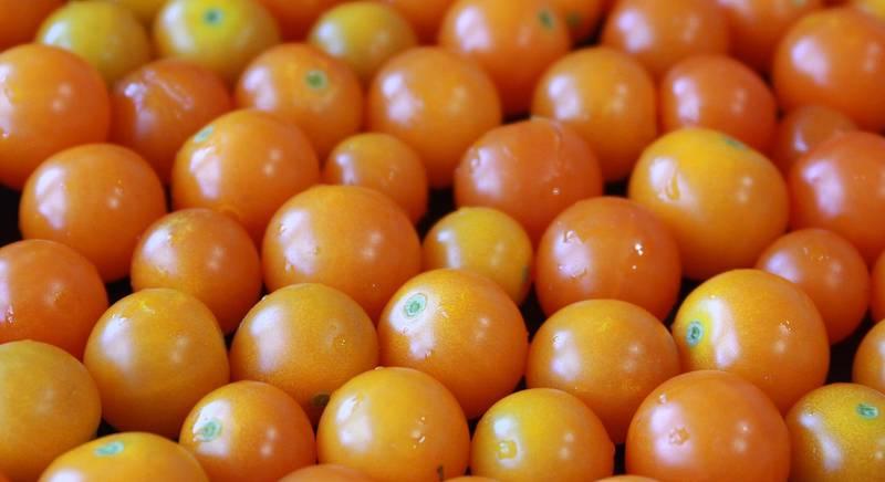 ТОП-6 сортов желтого томата черри