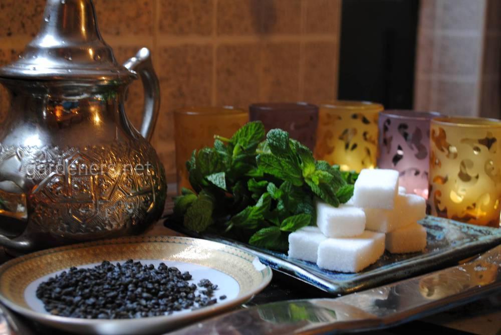 Традиції чаювання в Марокко
