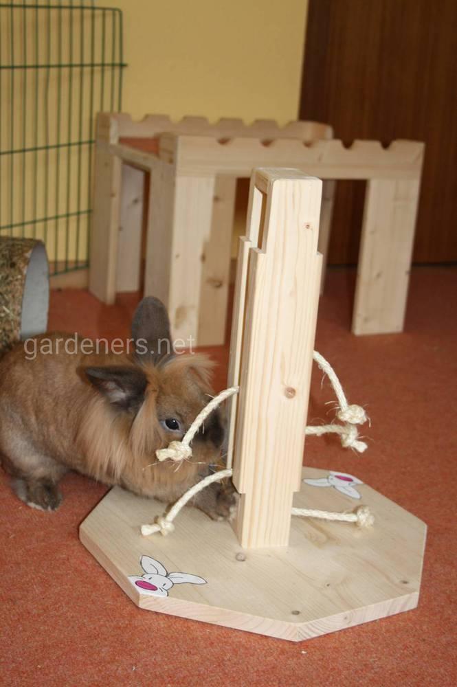 Все об игрушках для декоративных кроликов