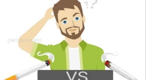 Что вреднее сигареты или каннабис?