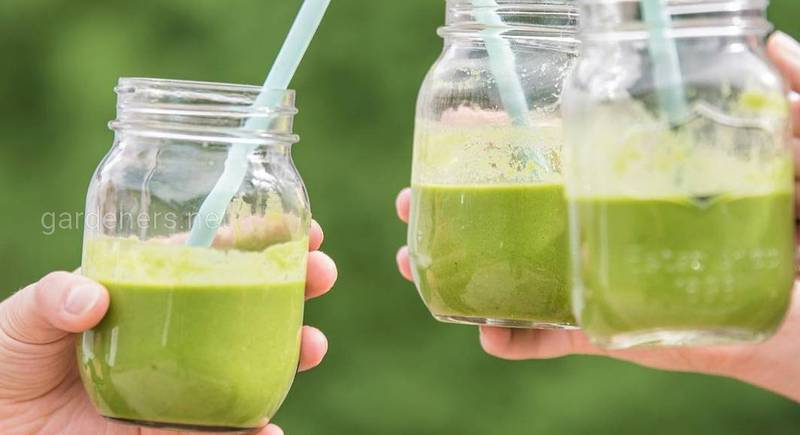 Топ-рецепты полезных зеленых смузи с Chlorella