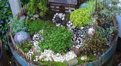 Новомодное увлечение «Сад Фей» - игра в мини-сад для всей семьи