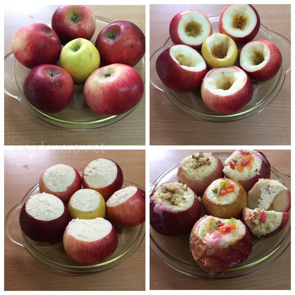 рецепт яблоки с творогом в духовке