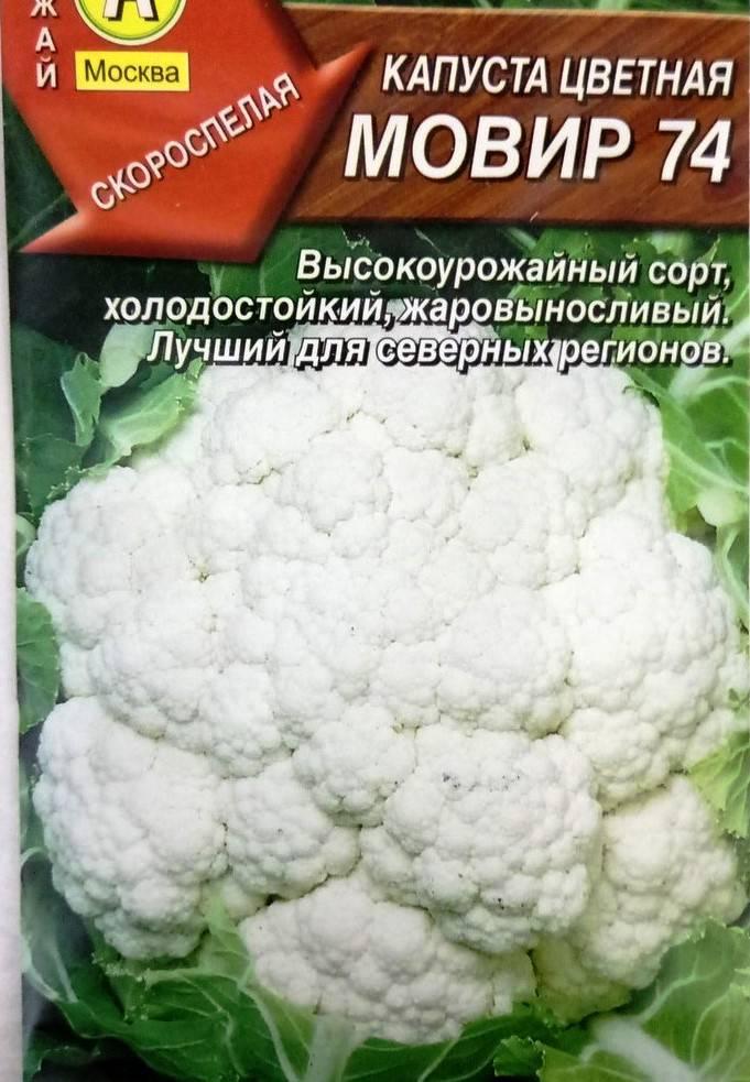 Сорт капусты Мовир 74