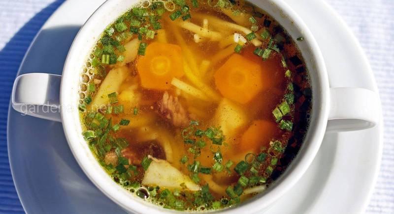 Удивляем гостей и родных: лучшие рецепты супов