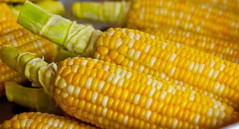 pop-corn-785074_1920.jpg