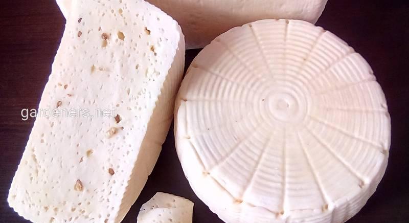 Сыр козий Качотта, 100гр