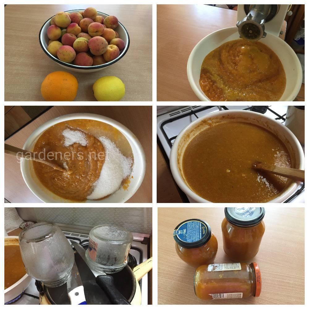 Рецепт Желе из абрикосов