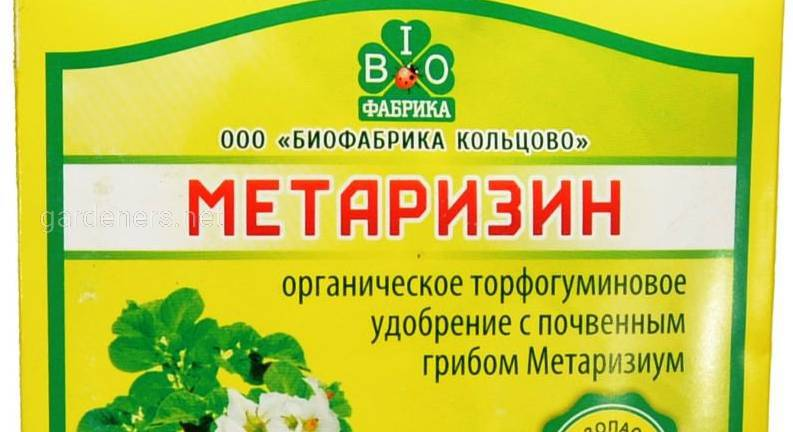 метаризин.jpg