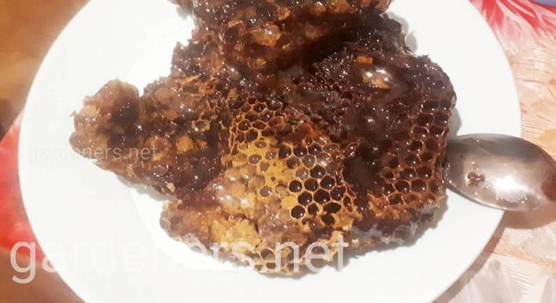 Мед в сотах более полезный