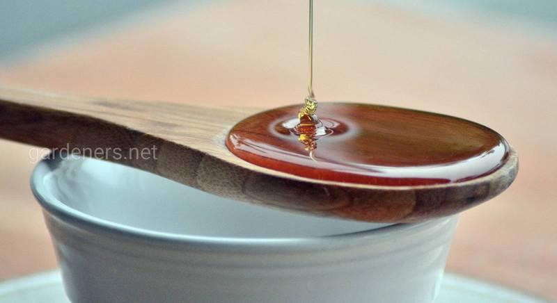 ТОП-4 проверенных способа, как кристаллизированый мёд сделать жидким