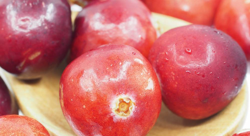 cranberry-1767424.jpg