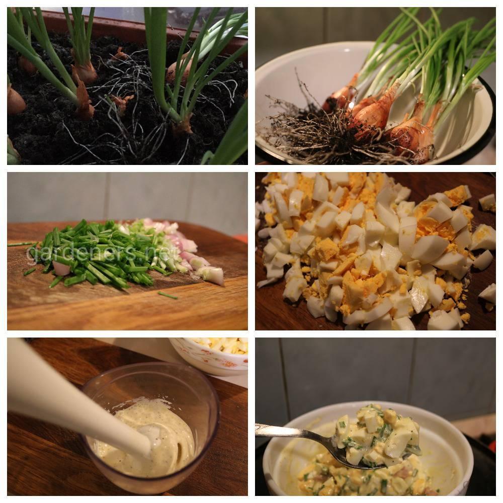 рецепт витаминного салата