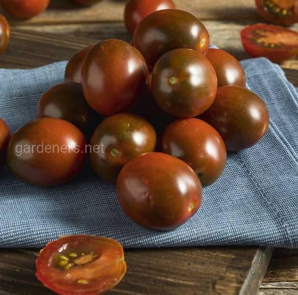 Користь помідорів «Кумато»