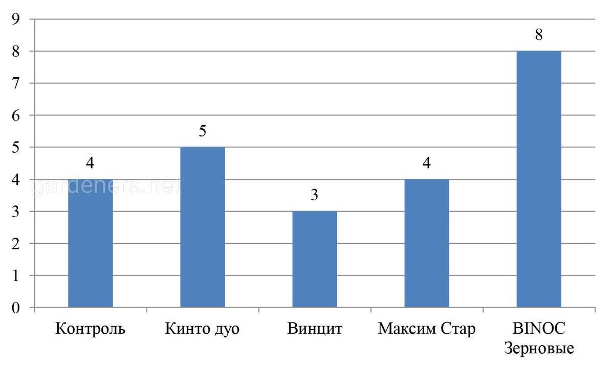 Влияние различных вариантов обработки на формирование всходов озимой пшеницы