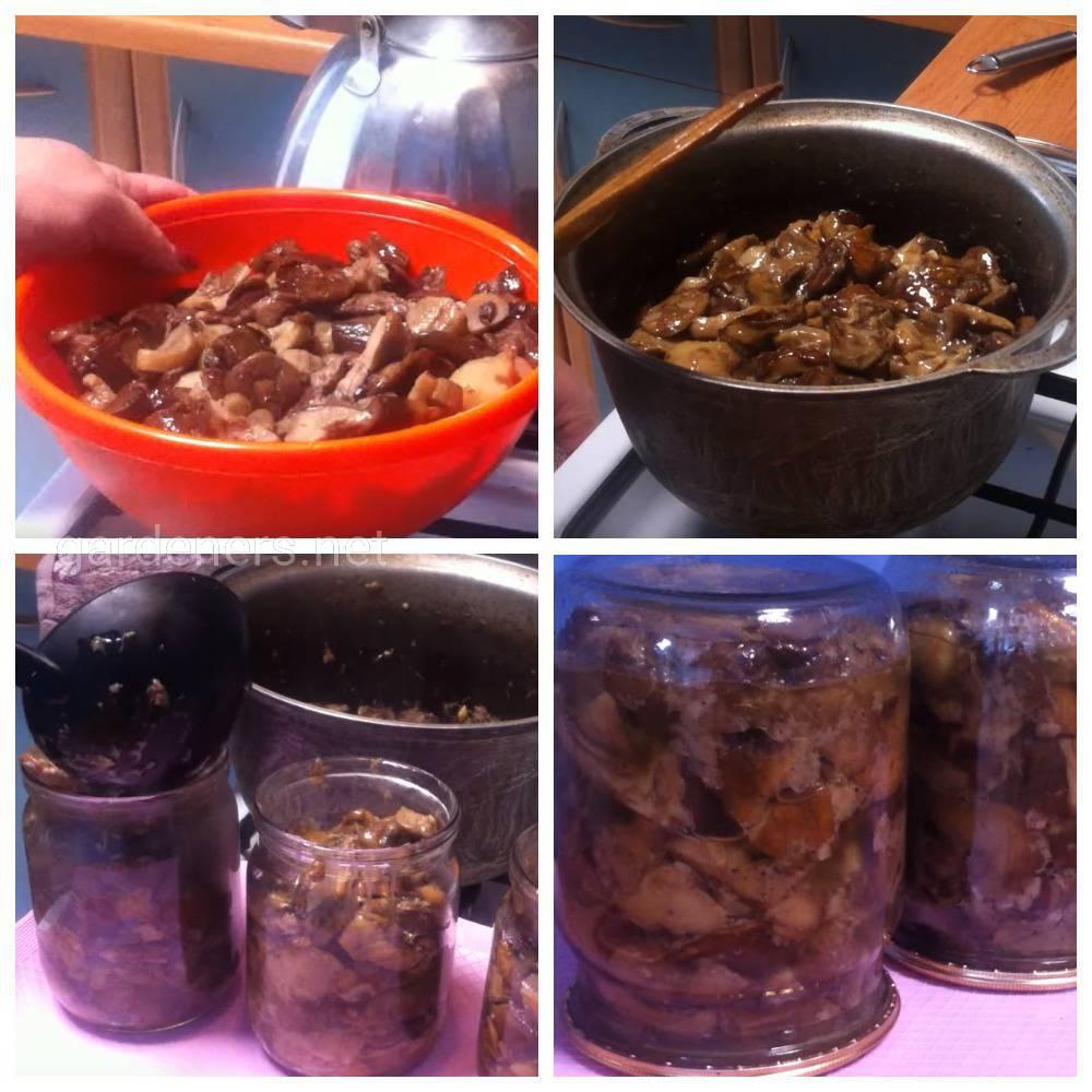 Рецепт жареных грибов в банках