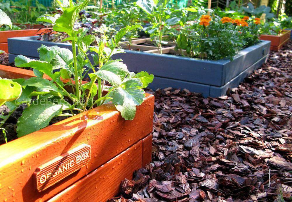 как сделать уход за садом проще