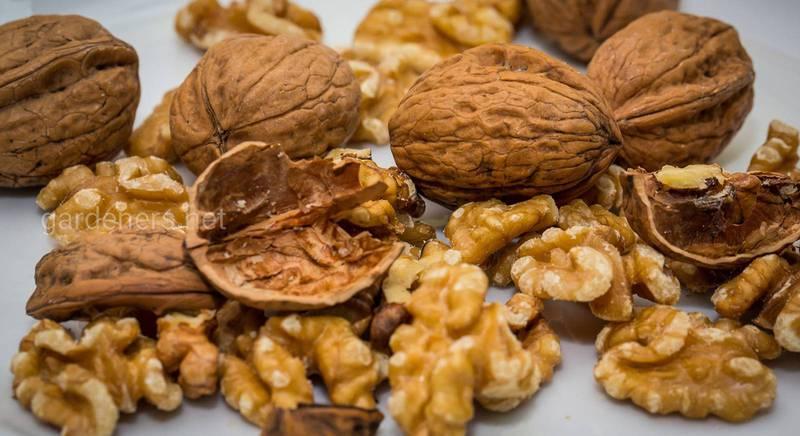 Як правильно смажити горіхи