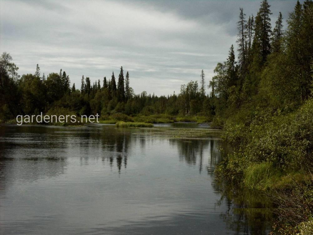 Що потрібно знати про риболовлю на новому водоймищі