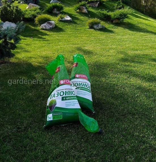 Мох с газона