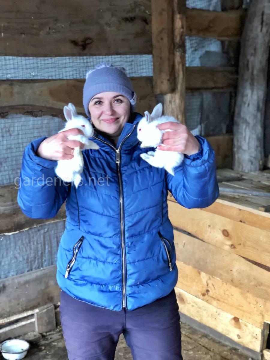 Кролики на ферме Ирины из Курска