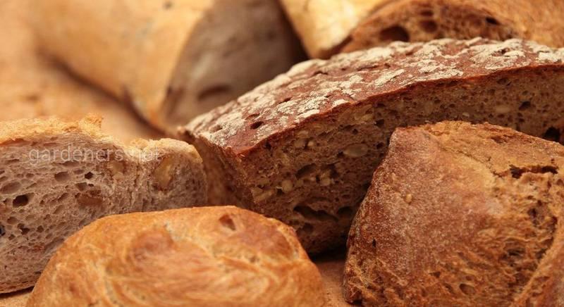 Щоб хліб зберігався довше  правила заморозки