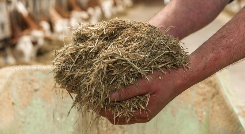 Использование сена и соломы на даче