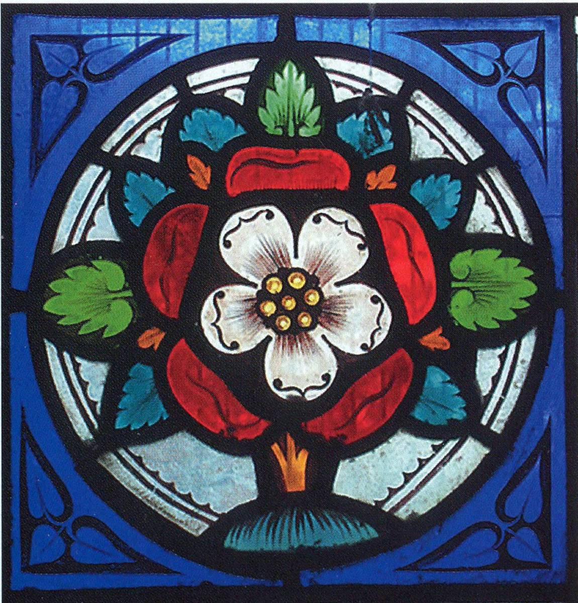 роза Тюдоров изображение
