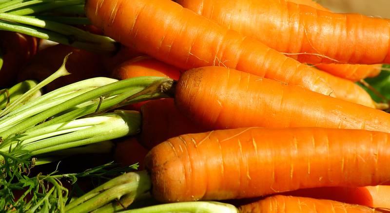 Как спасти морковь от болезней!