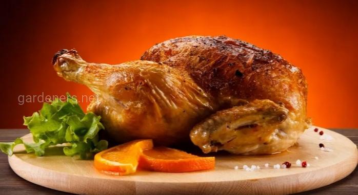 Суточные цыплята (корм для питомцев)