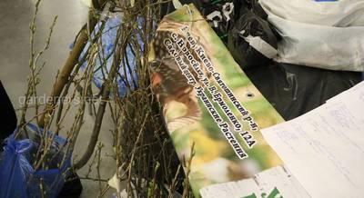 Садовий центр Украинские растения.JPG