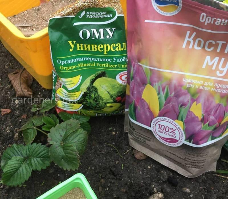 Які штучні та органічні добрива обирати для підживлення кімнатних та садових рослин?