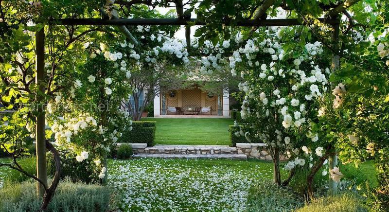 романтический сад.jpg