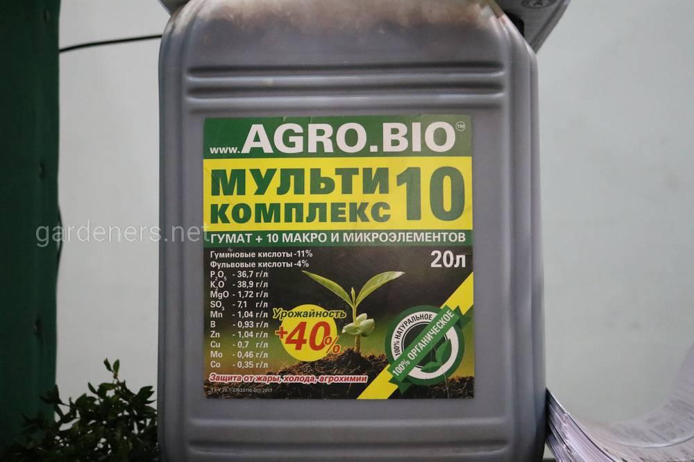 Мировой рекорд сорго «Agro.bio» и «Укрсорго»