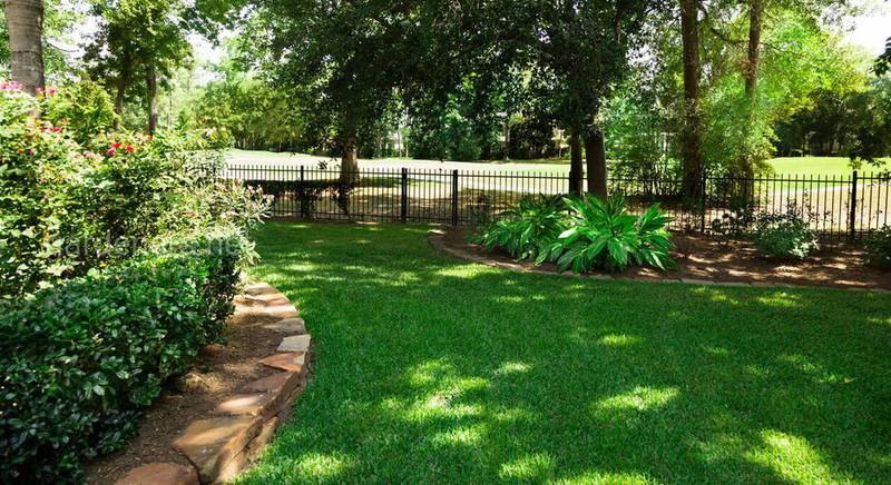 Шаг за шагом: как ухаживать за тенистыми лужайками