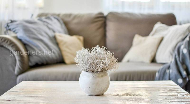 Современные цвета мягкой мебели для гостиной