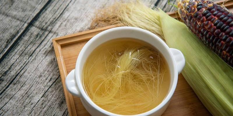 Чим корисний чай із кукурудзяного шовку?