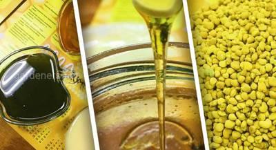 Зелений та корисний мед з хлорелою