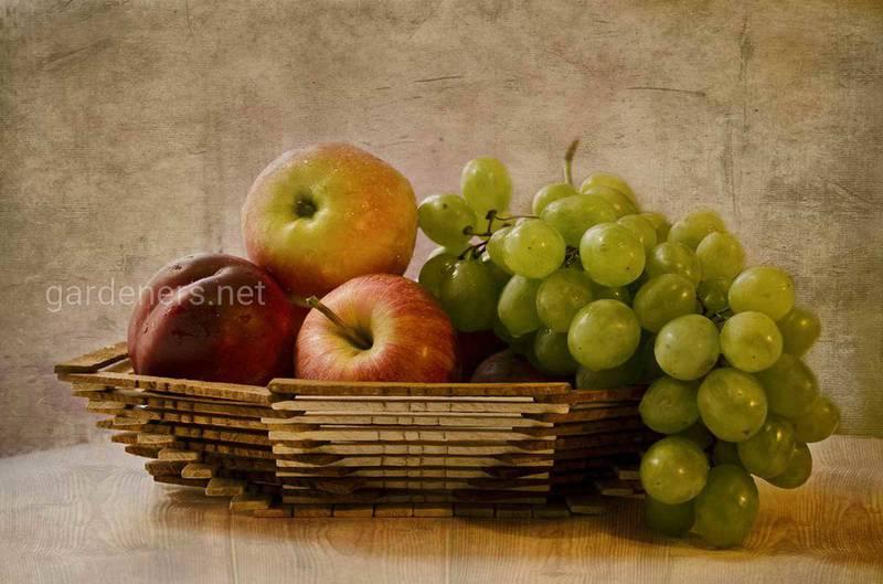 Чому взимку слід приділяти особливу увагу харчуванню?