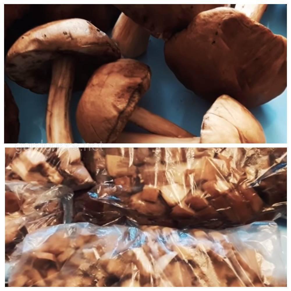 Мороженые грибы