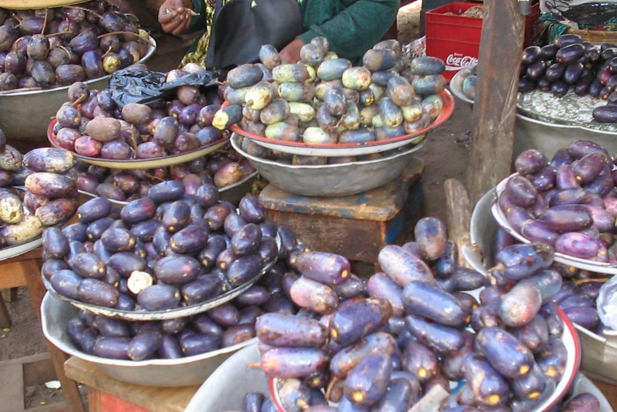 африканская груша