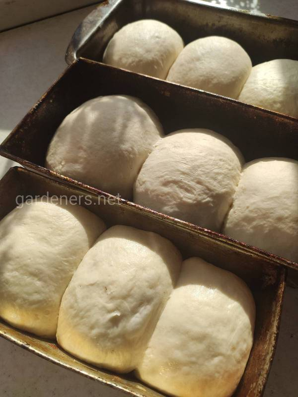 Формовый хлеб