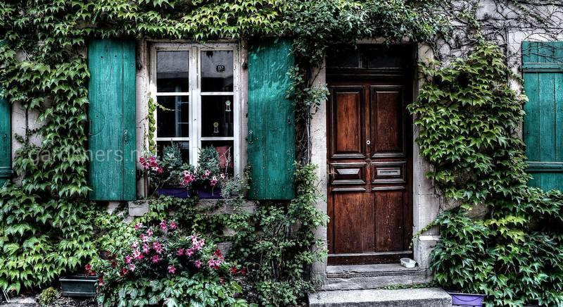 Дверь в садовый домик
