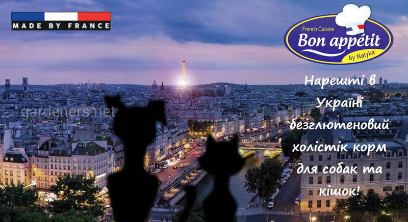 Французская гастрономия для собак и кошек