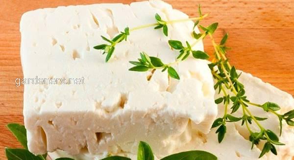 Сыр фета орегано с маслом, банка 0, 350 гр