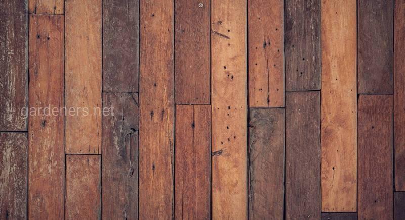 Как защитить деревянный пол от гниения и вредителей