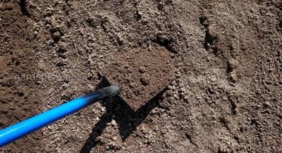 суглинистая почва.jpg