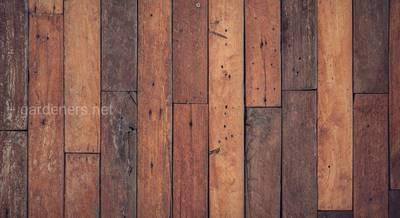Уход за деревянным полом